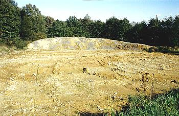 Hier entsteht ein neues Biotop: Der Mutterboden wurde abgetragen, ein Wall errichtet und mit Kalksteinen versehen. Es soll sich ein Refugium für wärme- und nährstoffarmen Boden liebende Pflanzen und Tiere entwickeln.