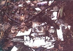 Müll - Herbstkehraus 2003